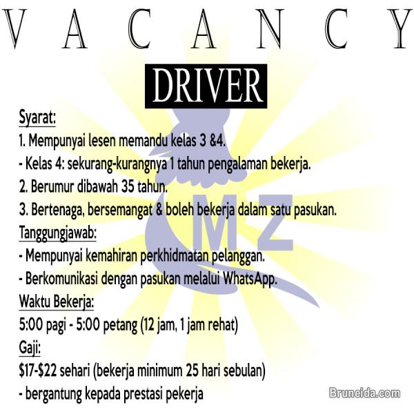 Picture of DRIVER (LESEN 4)