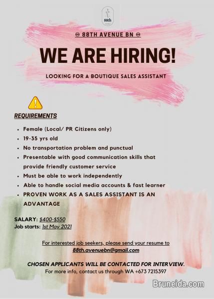 Picture of LOOKING FOR BOUTIQUE SALES ASSISTANT