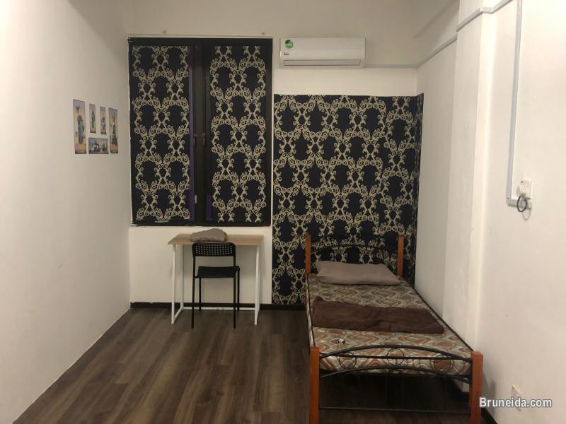 Furnished room for rent $310 - image 1