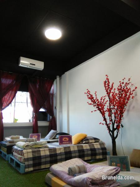 Picture of Dormitory Room for Rent