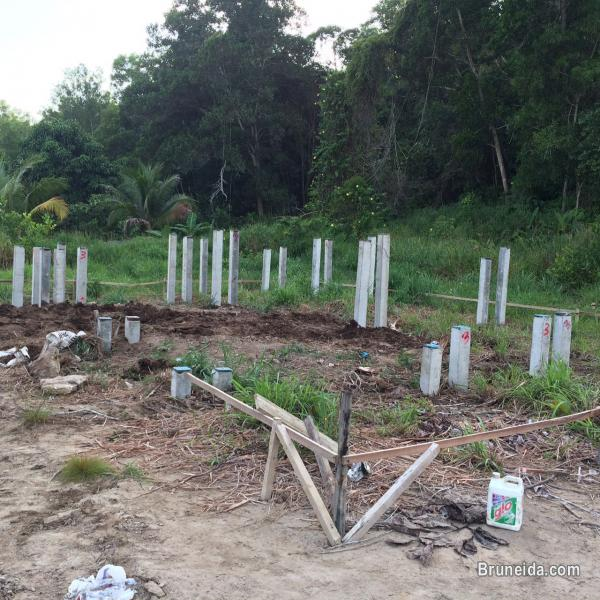 Proposed Double storey Detached house on lease land for Sale