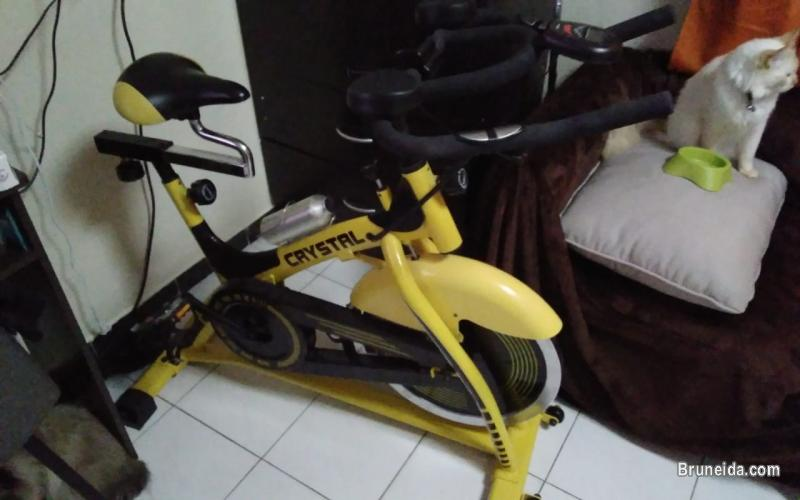 Pictures of Indoor Bicycle with Odometer