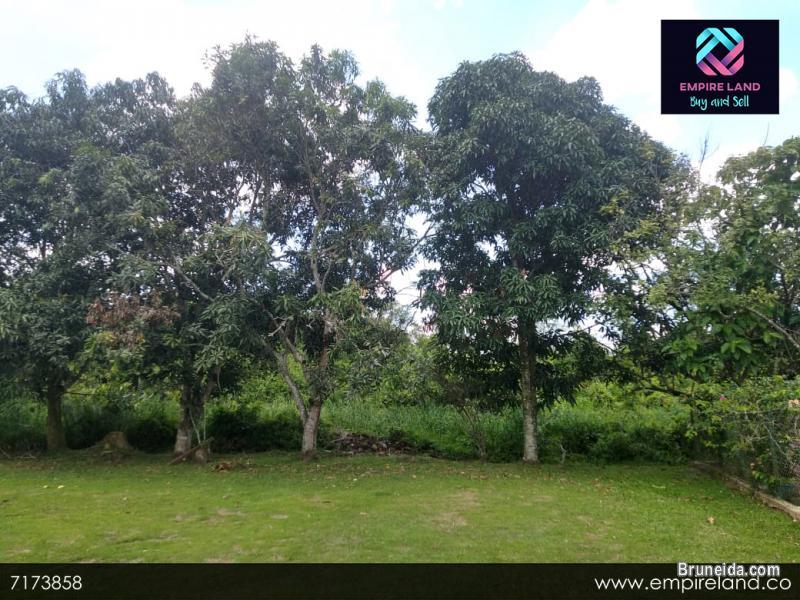 (SOLD) BENGKURONG, BRUNEI - BETHANY LAND in Brunei Muara