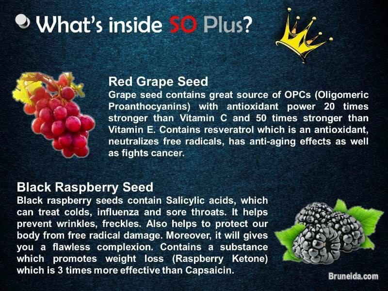 SO Plus - Your one nutraceutical drink for better health. in Brunei Muara