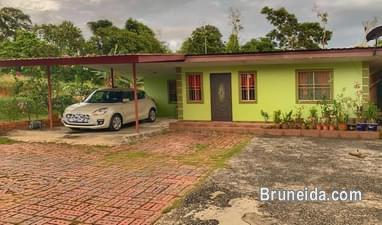 Picture of BND500 (SMALL BUNGALOW FOR RENT)