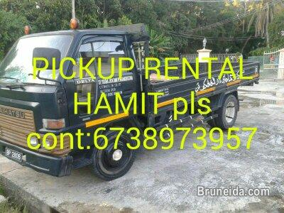 Pictures of HAMIT PICKUP RENTAL