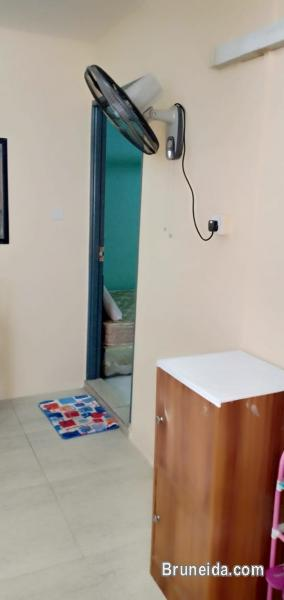 House for Rent $370 in Brunei - image