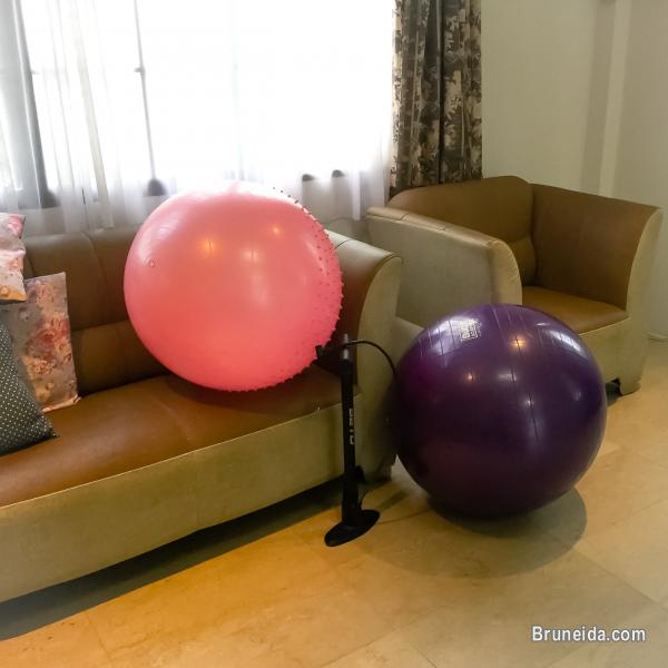 Picture of Yoga balls with air pump