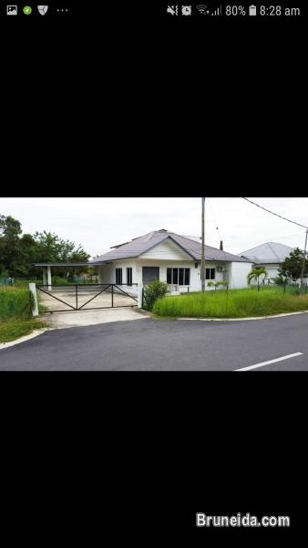 Picture of Spacious bungalow house for rent