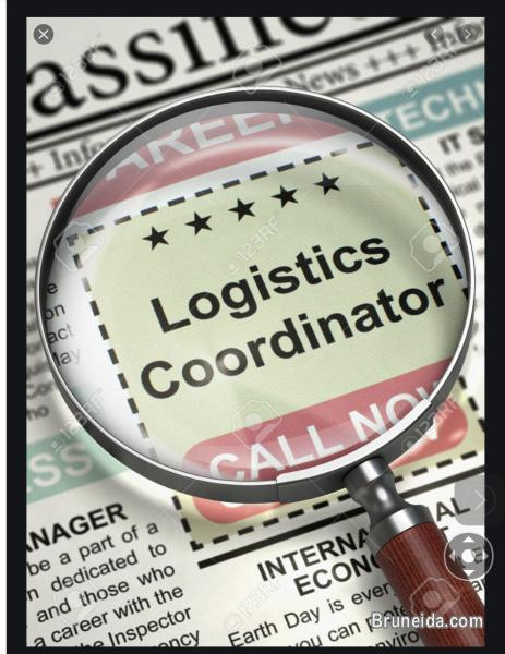 Picture of LOGISTIC COORDINATOR