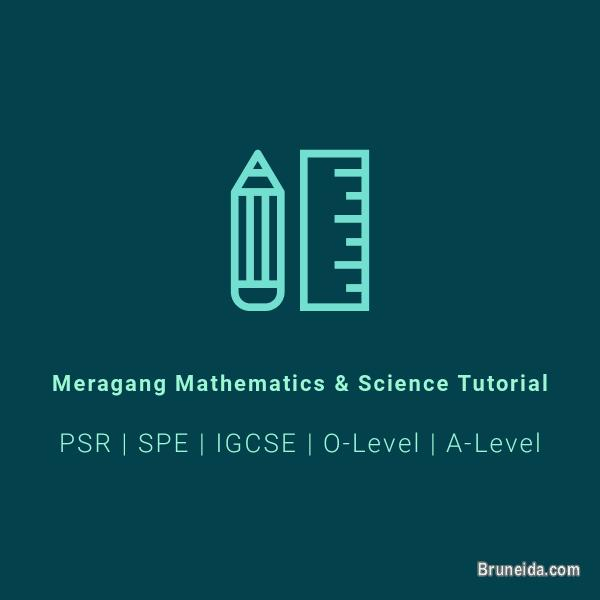 Offering High Quality Mathematics Tutoring (O-Level and A-Level)