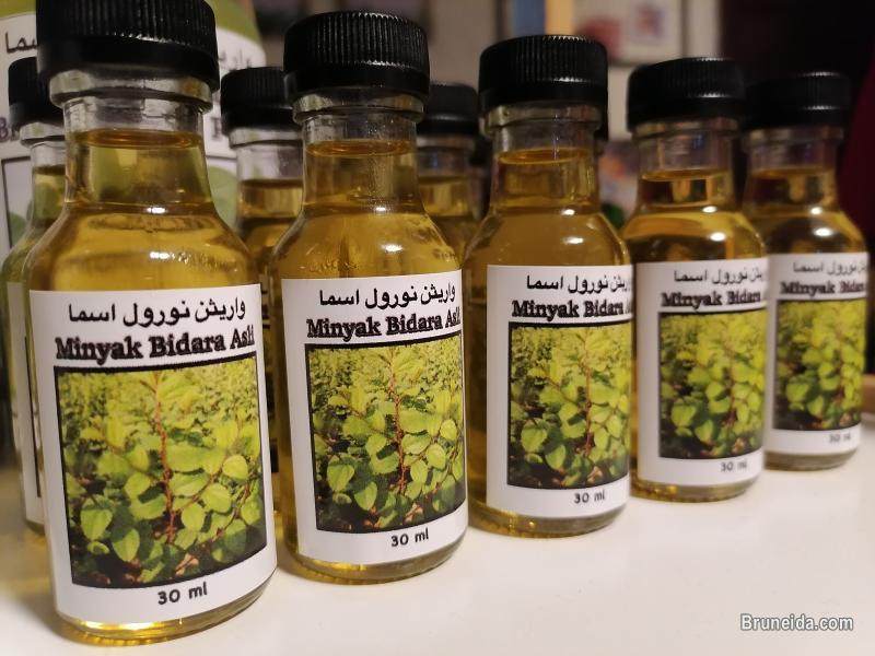 Picture of Minyak Syifa Bidara Asli