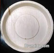 Palm leaf plates biodegradable and eco friendly in Brunei Muara