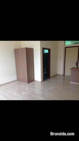 Picture of Studio flat for rent $480
