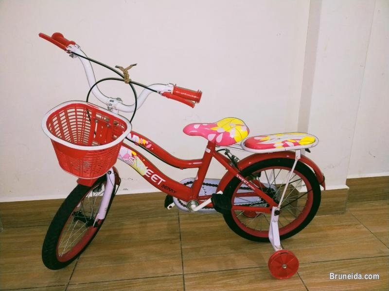 Picture of New Bicycle for sale can suitable for 3 to 8 year old.