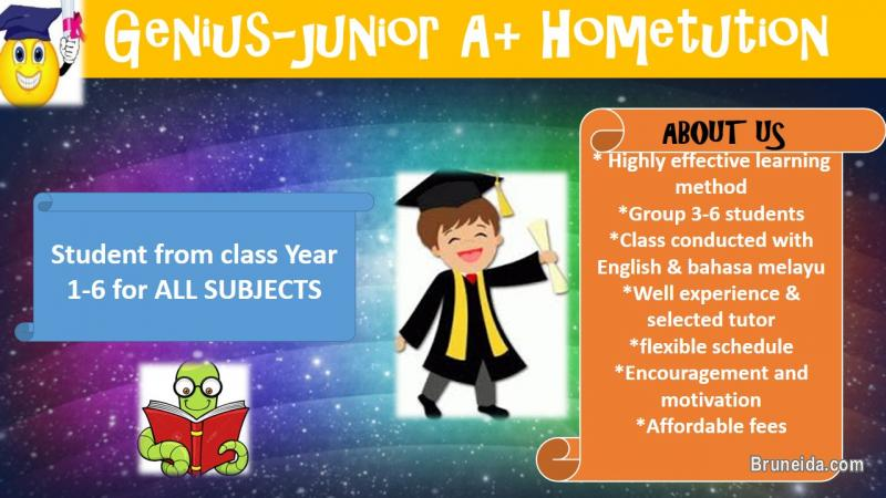 Picture of Genius-junior A+ hometution