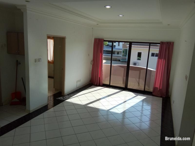 Apartment or Room For Rent