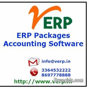 Picture of 11 Year old company selling ERP Software with Source Code