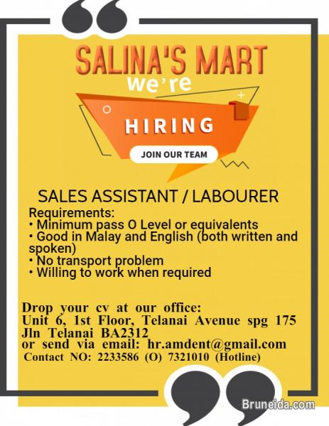 Picture of Sales Assistant / Labourer