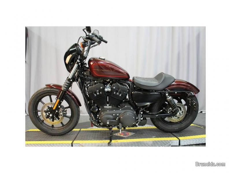 Picture of 2019 Harley-Davidson XL 1200NS - Sportster Iron 1200 For sell