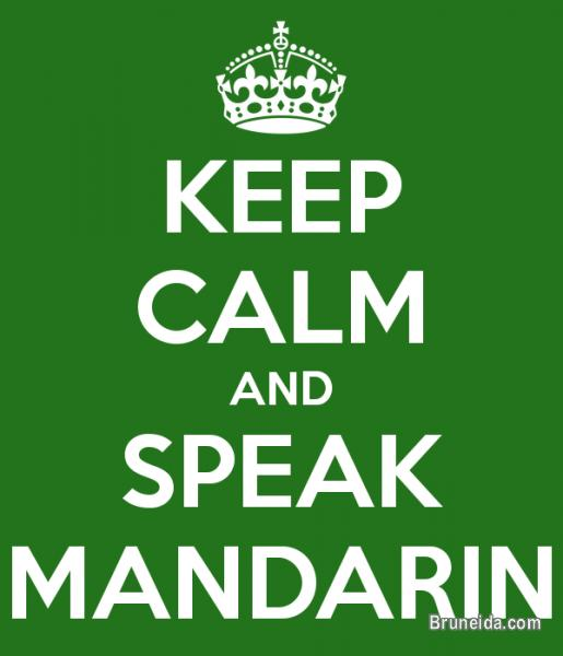 Picture of MANDARIN LESSONS FOR ALL AGES/LEVELS