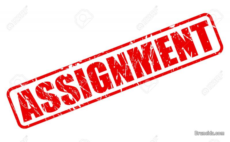 Assignment help or guidance in Brunei Muara