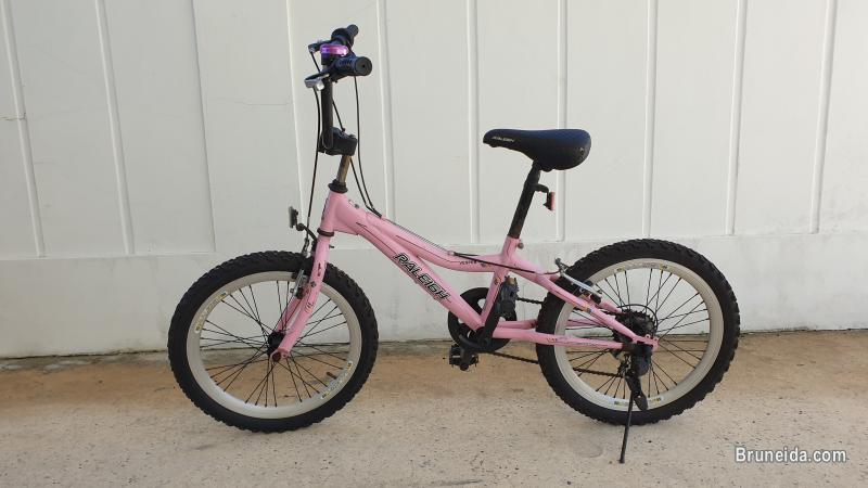Picture of Raleigh Kids Bicycle (Used)