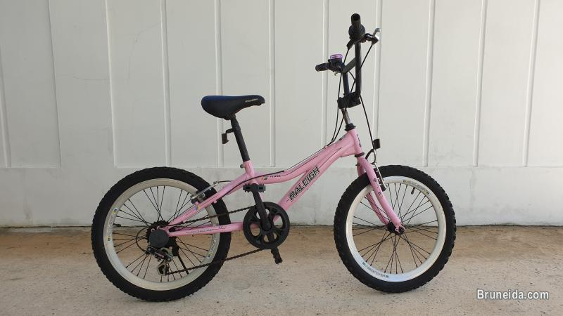 Raleigh Kids Bicycle (Used)
