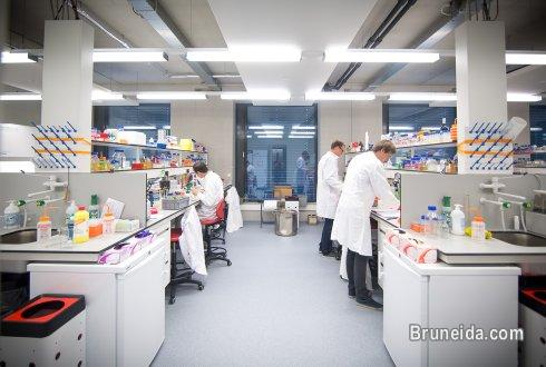 Picture of Government Biosciences Research Laboratory Set up Consultant