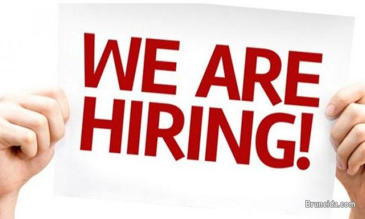 Pictures of Immediate Vacancy - Accounts Assistant
