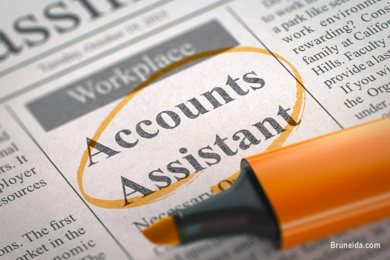 Picture of Accounts Assistant