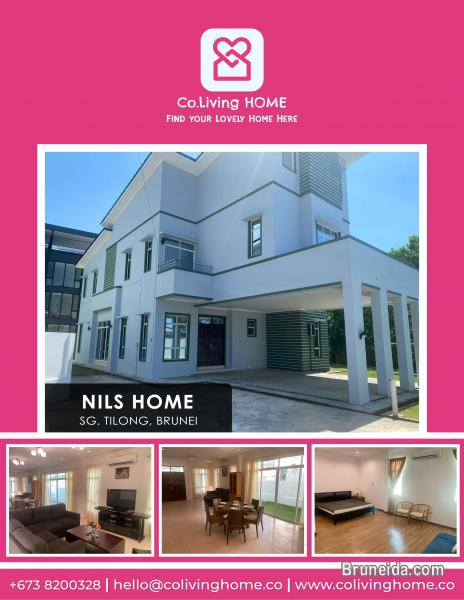 Pictures of Sg. Tilong - NILS HOME FOR RENT $2200