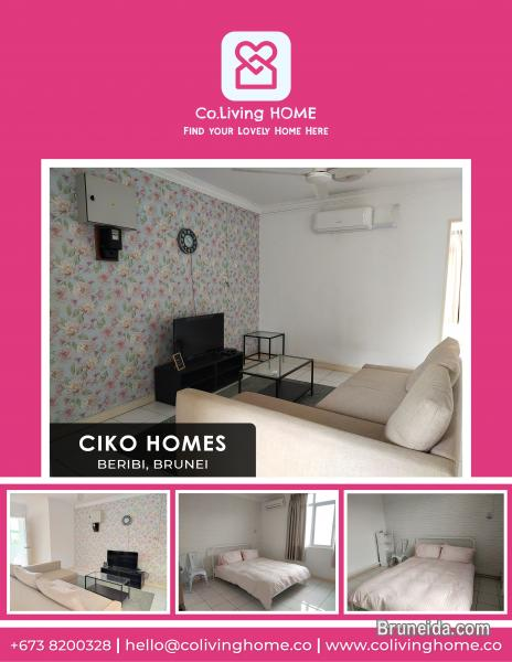 Picture of Beribi - CIKO HOMES FOR RENT $900 (Unit 4 2nd Floor)