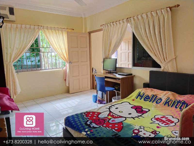 Subok - BURCU HOME FOR SALE $180K - image 10