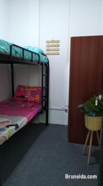 Picture of Room 3a Co. Living Saga