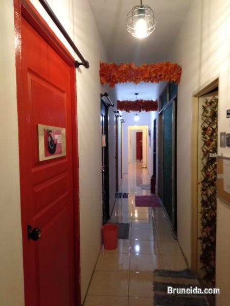 Co. Living Saga DORM A - $15 per night Sharing Room - image 11