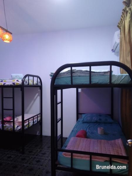 Co. Living Saga DORM A - $15 per night Sharing Room - image 2