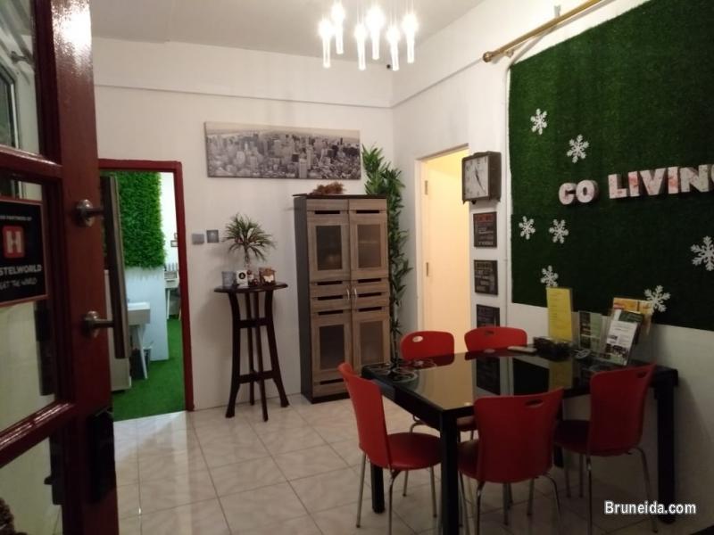 Co. Living Saga DORM A - $15 per night Sharing Room - image 5