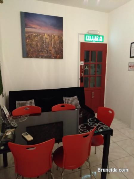 Co. Living Saga DORM A - $15 per night Sharing Room - image 8