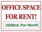 BUSINESS & OFFICE SETUP