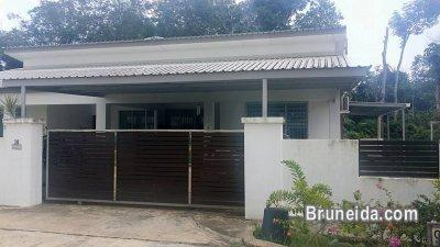 Pictures of CHEAP HOUSE FOR SALE