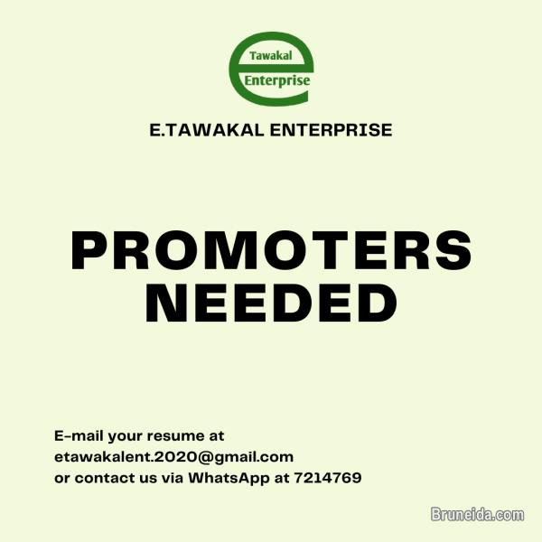 Pictures of PROMOTERS NEEDED