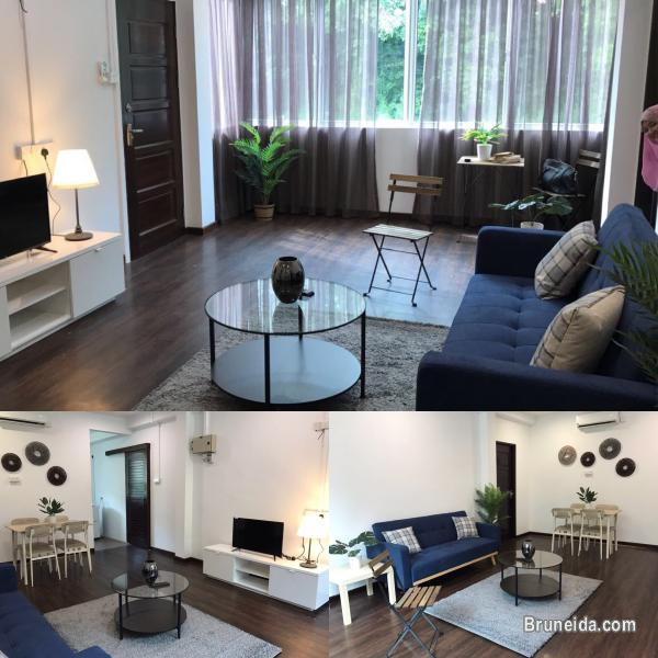 Studio And 1 Bedroom Apartments For Rent: Newly Renovated FF Studio Unit And 2 Bedroom Unit For Rent
