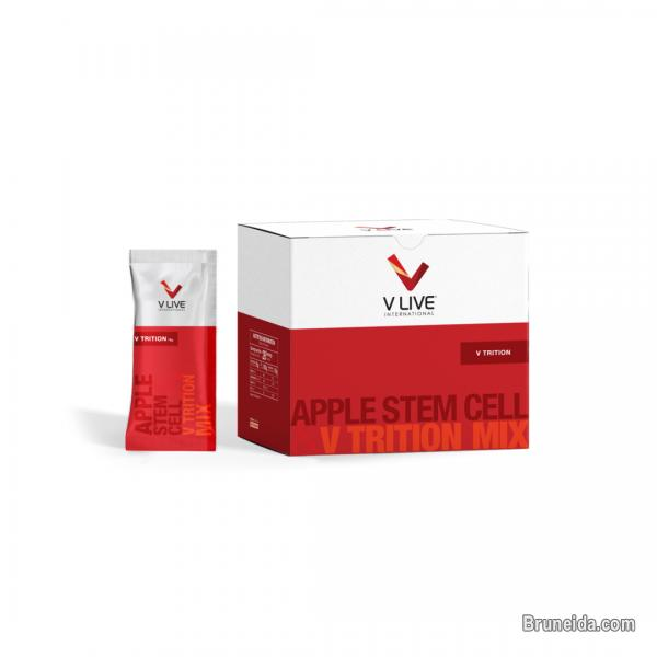 Picture of Vlive Vitamin BOOST YOUR BODY CELLS TO FIGHT AGAINST DISEASES!