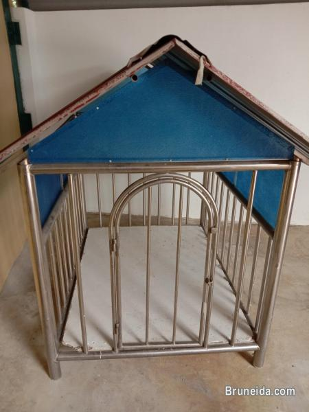 Pictures of Little Pet House For Sale
