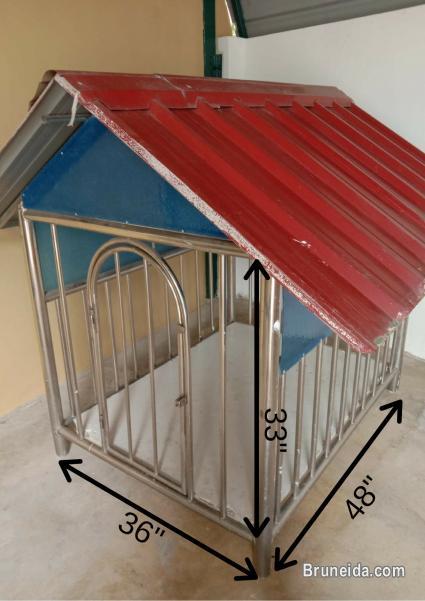 Little Pet House For Sale