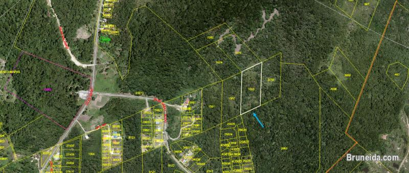 Picture of 1. 171 acre Land for Sale @ Kampong Kasat