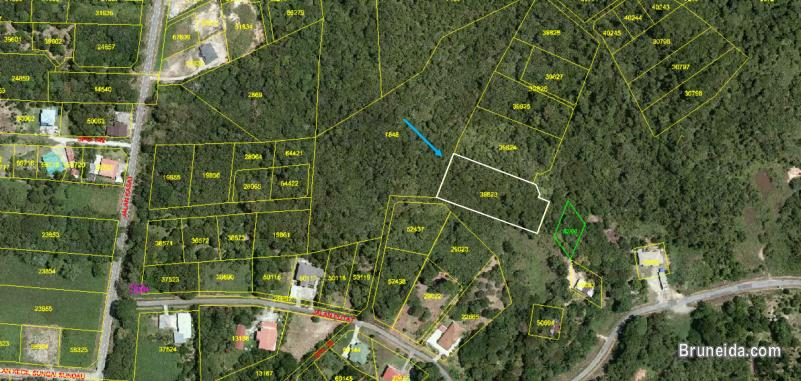 Picture of 1. 281 acre Land for Sale @ Kampong Kasat, Mukim Lumapas