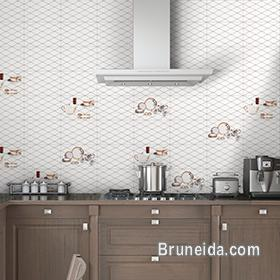Picture of Wall Tiles and Ceramic Tiles, Natural Stones in Brunei Muara