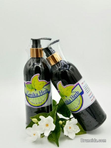 Picture of Best Anti Hair Loss: '' Kenika Herb Hair Shampoo ''